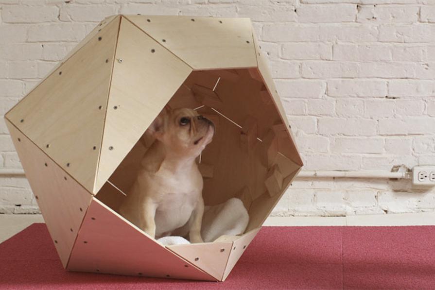 imagem-destaque-casinhas-para-cachorro