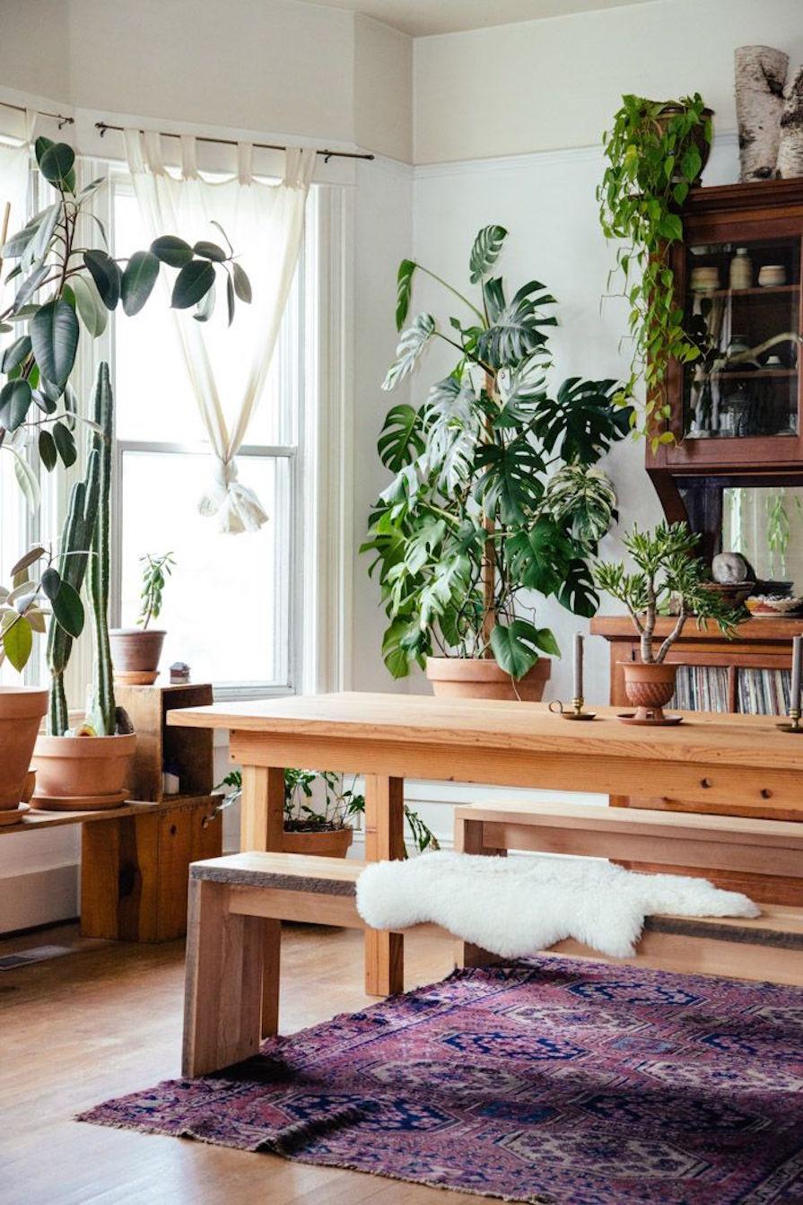 mais-verde-dentro-de-casa-plantas-decoracao-danielle-noce-9