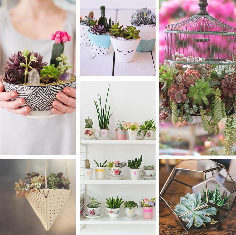 vasos-e-ideias-legais-para-colocar-mais-plantas-em-casa-danielle-noce-2