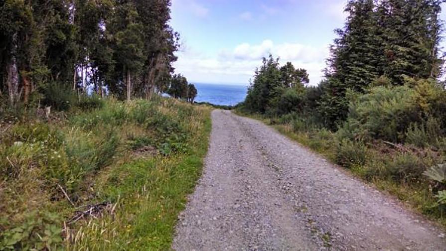 estrada-carretera-austral-patagonia-chilena-danielle-noce-4