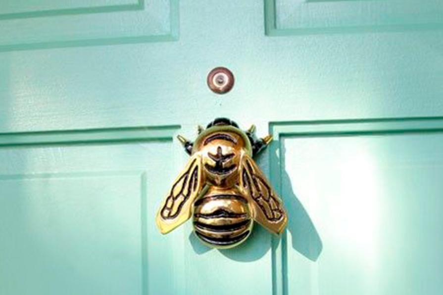 mania-insetos-bugs-na-decoracao-danielle-noce-imagem-destaque